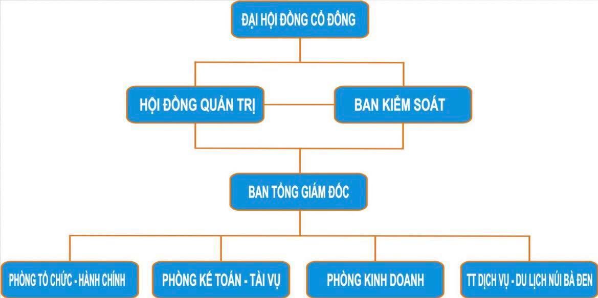 Sơ đồ mẫu mô hình tổ chức, quản lý công ty cổ phần